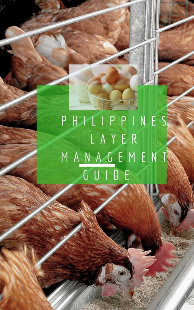 Philippines Layer Management Guide